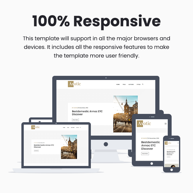 axotic 100 percent responsive template Themeix