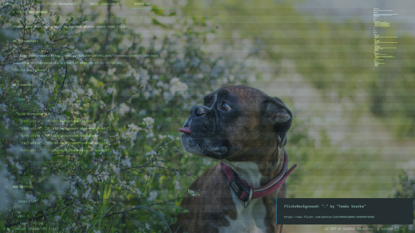flickr-background
