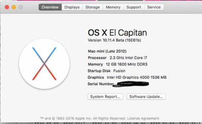 Mac Mini Details