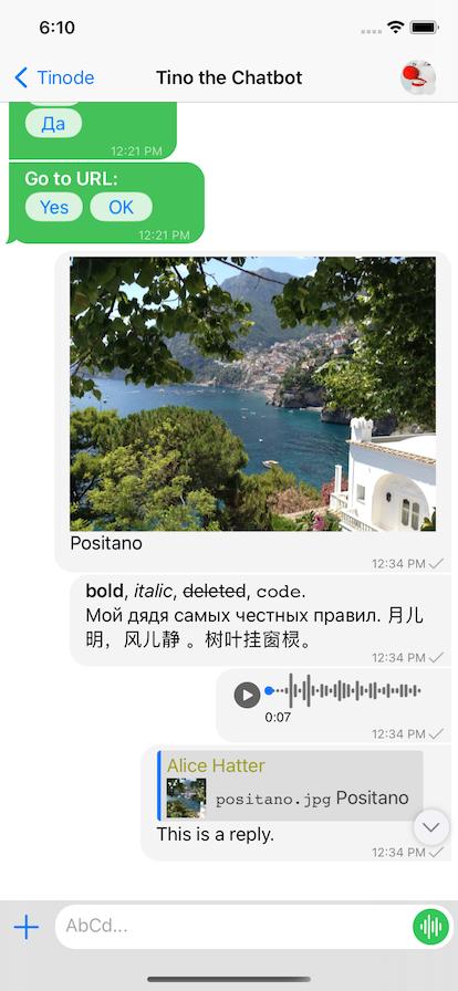 iOS screenshot: one conversation