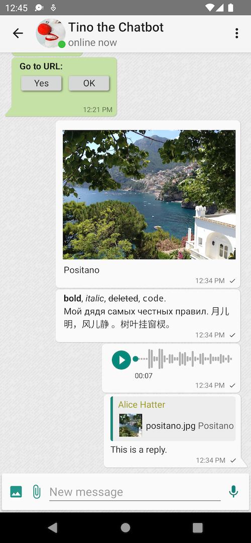 App screenshot - chat