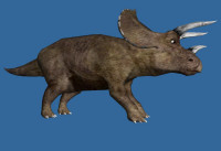 images/triceratops_sml.jpg