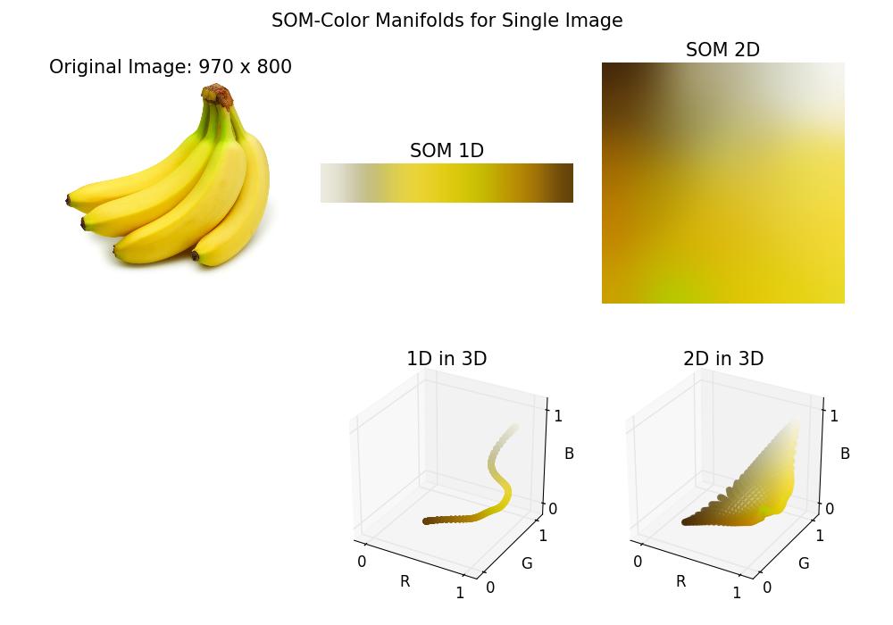 バナナのSOMマップ