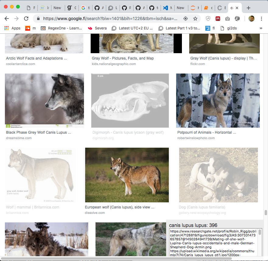gi2ds - Google Image Search to Dataset