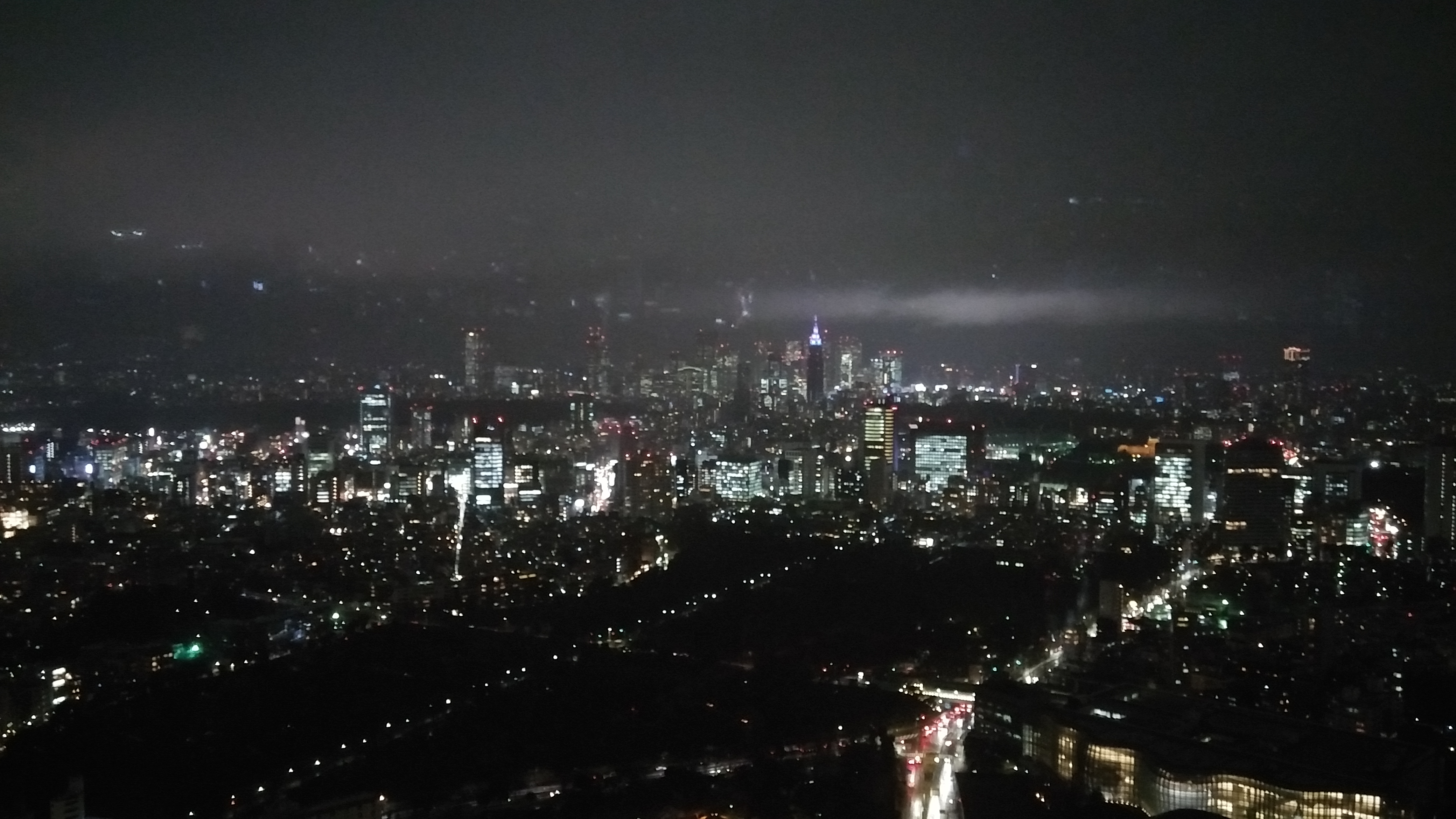 Tokyo panorama by night