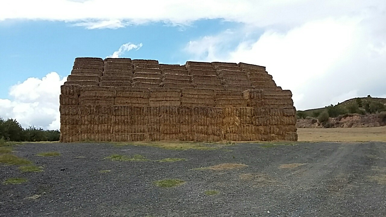 A big stack of square hay bales