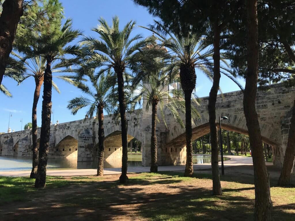 Bridge and trees in Turia Gardens