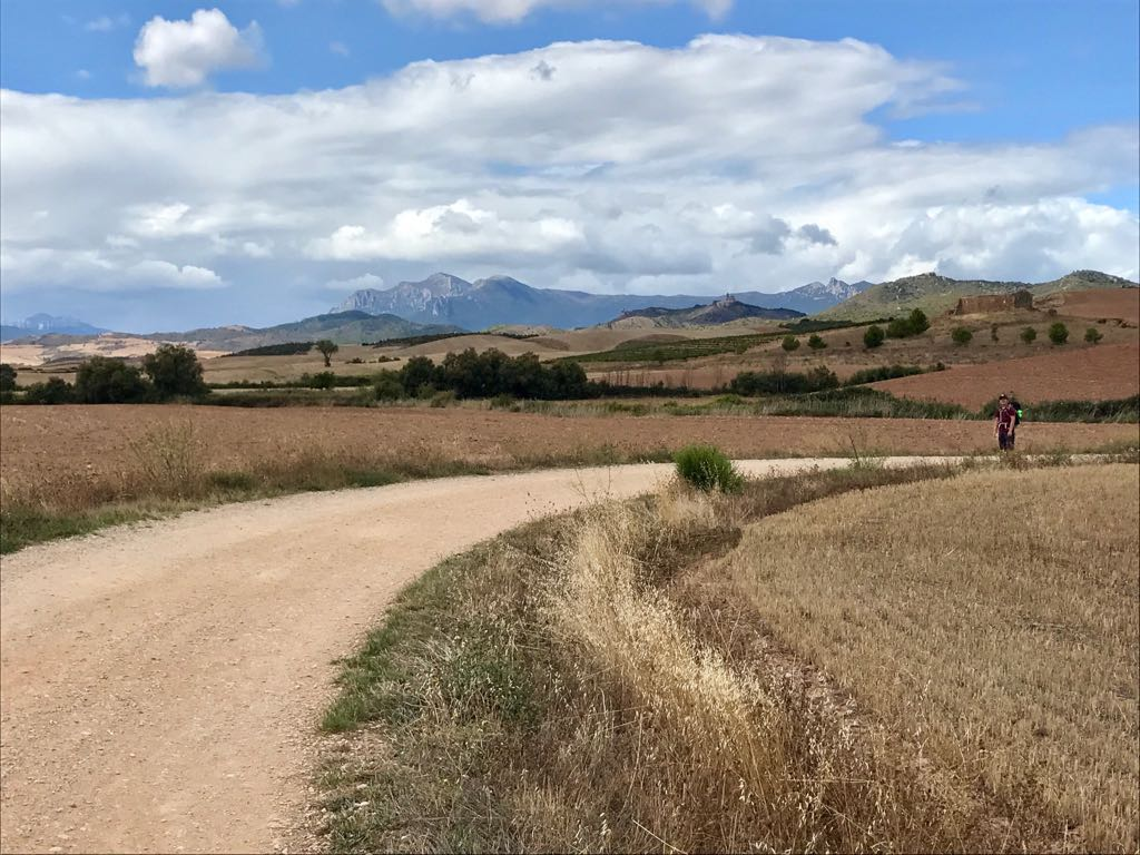 The Camino path in the area of Arcos, curvinf between fields with mountains in the distance