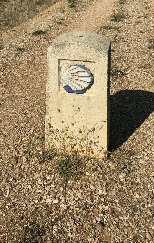 camino pillar and shrub