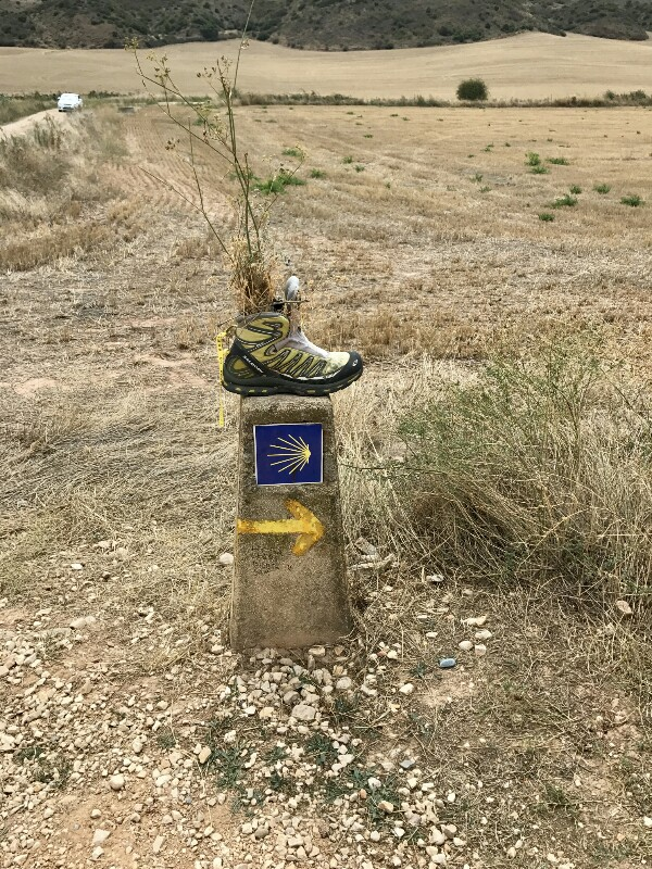 camino pillar with a boot and shrub on it