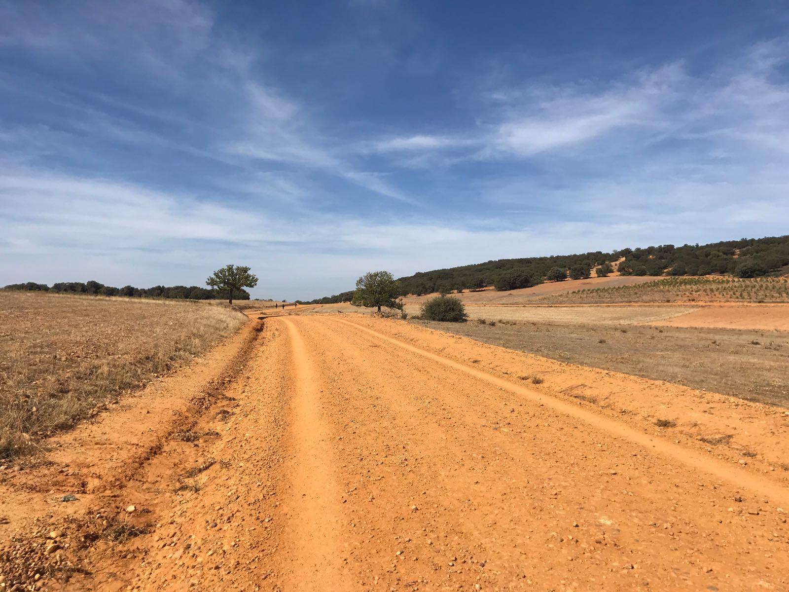 Orange dusty path below a blue sky