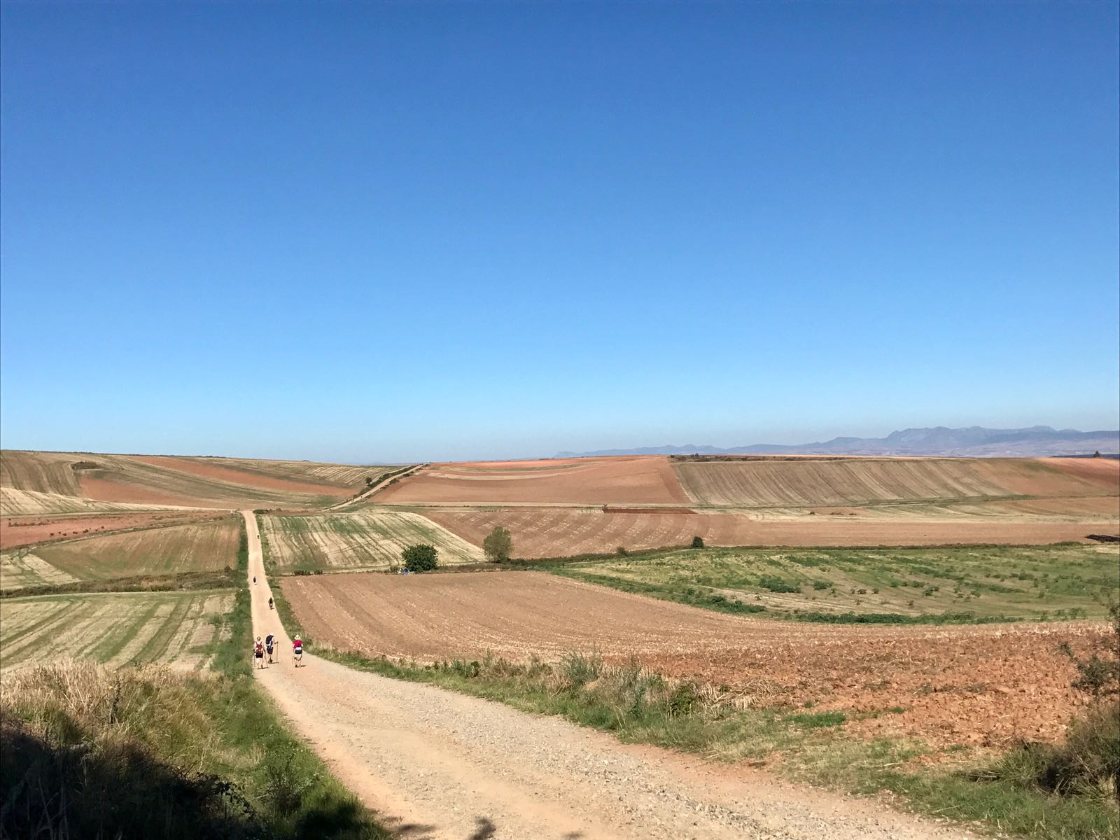 Country fields on the way to Najera