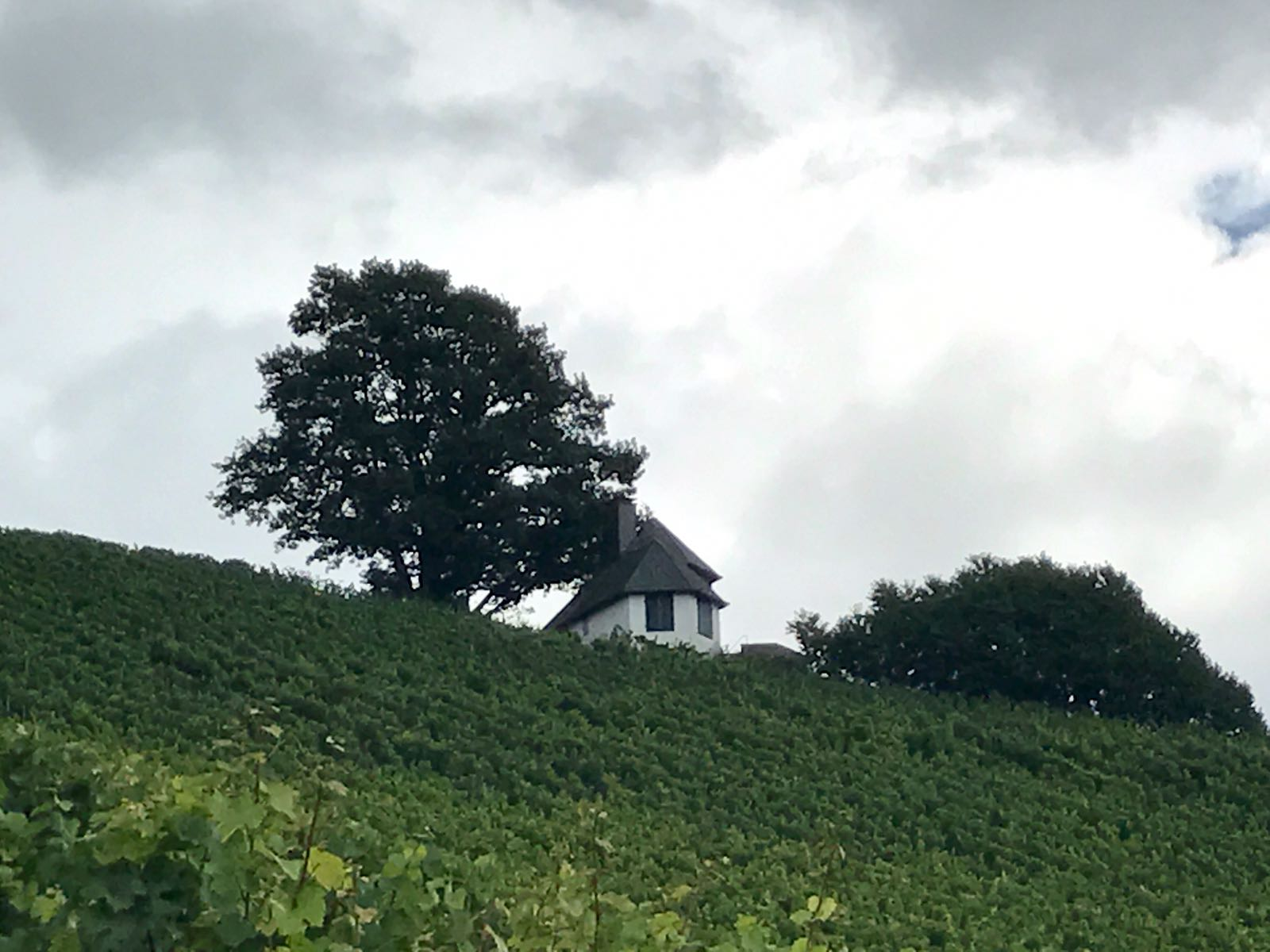 House above the vineyards on Ortenauer wine route