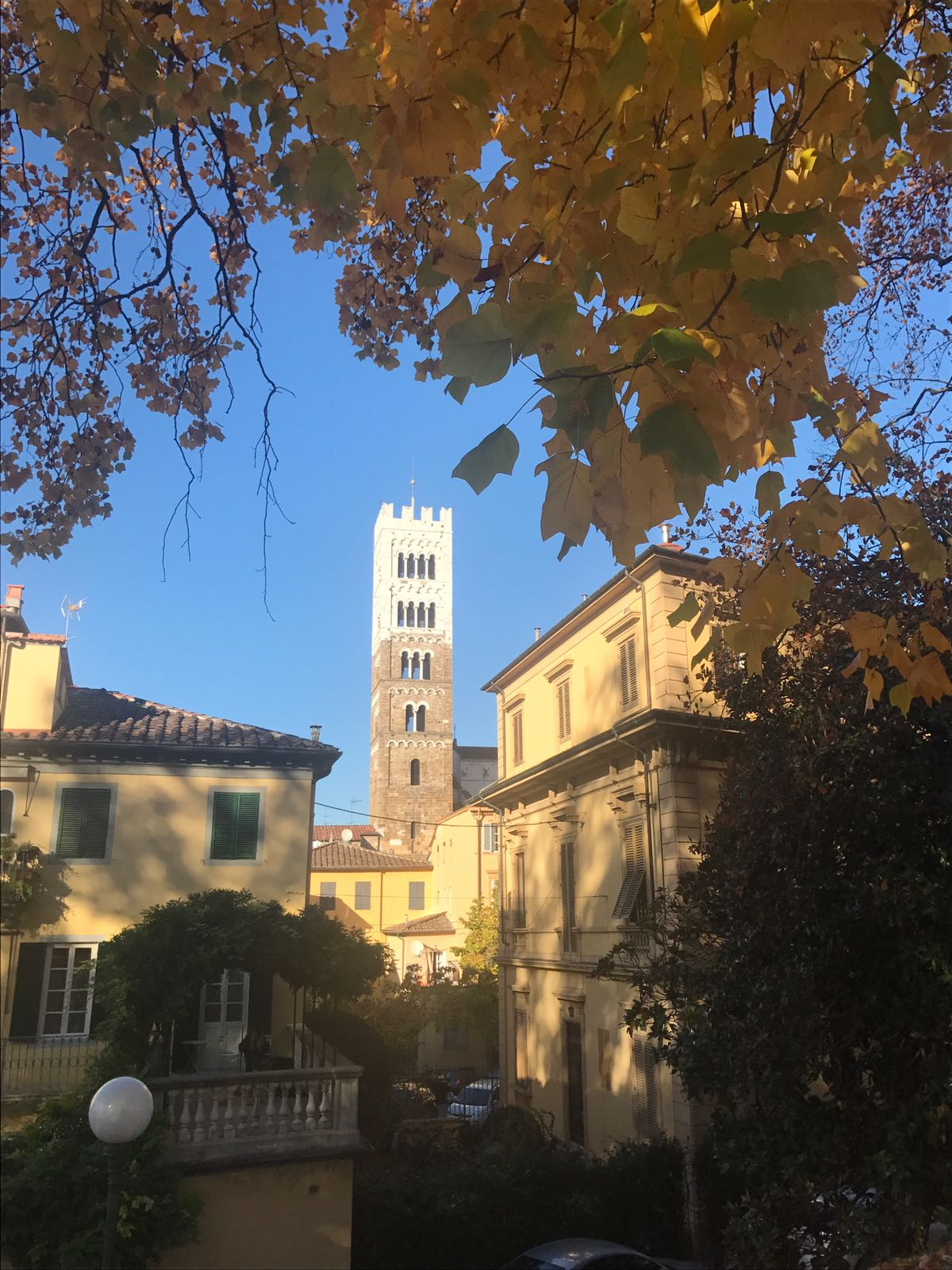 A church tower, surrounded by old Italian houses, seen through the leaves of autumn trees