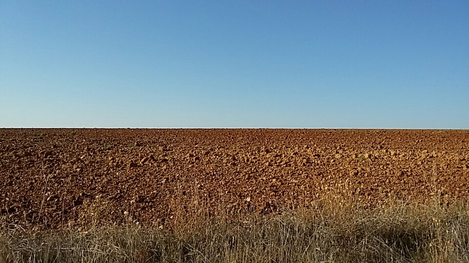 Photo from the Meseta split into two equal sections: darker blue sky and a warm orange wheat field