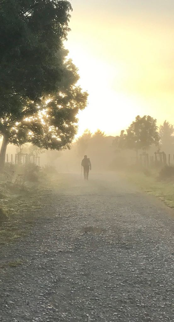 A pilgrim walking down a country road through the mist early in the morning