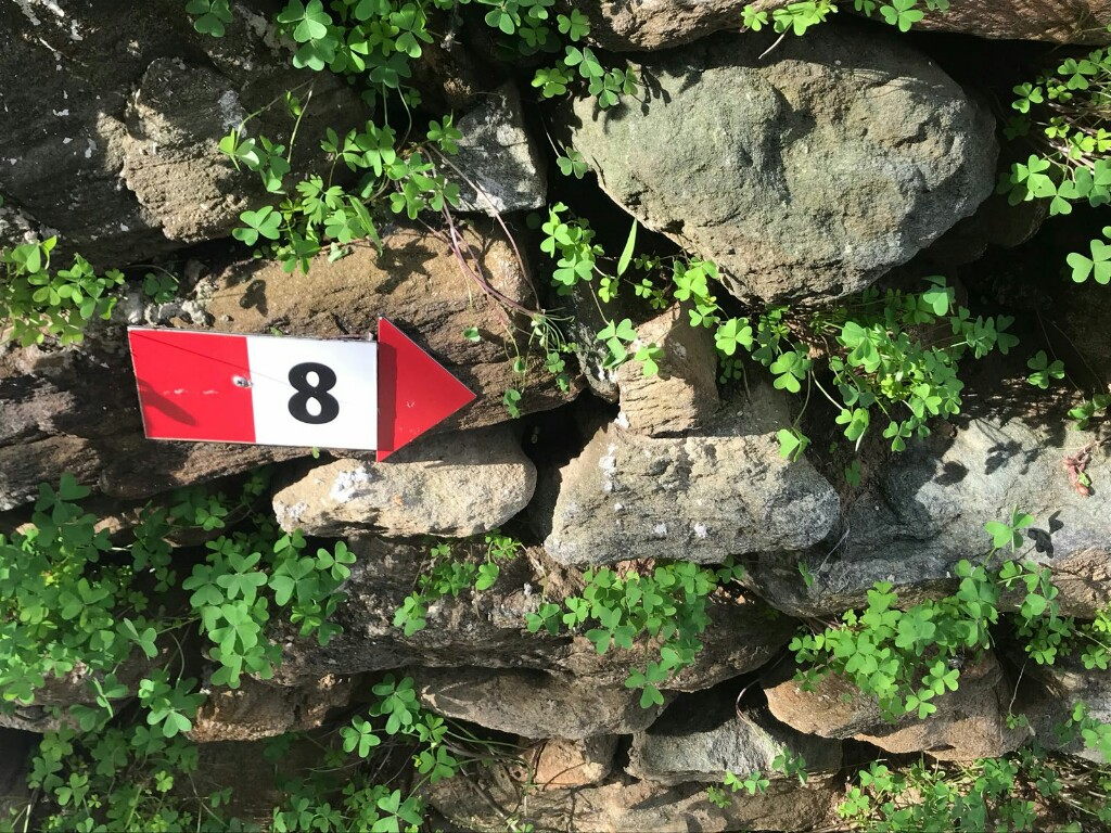 Red and white arrow marking route 8 on Andros
