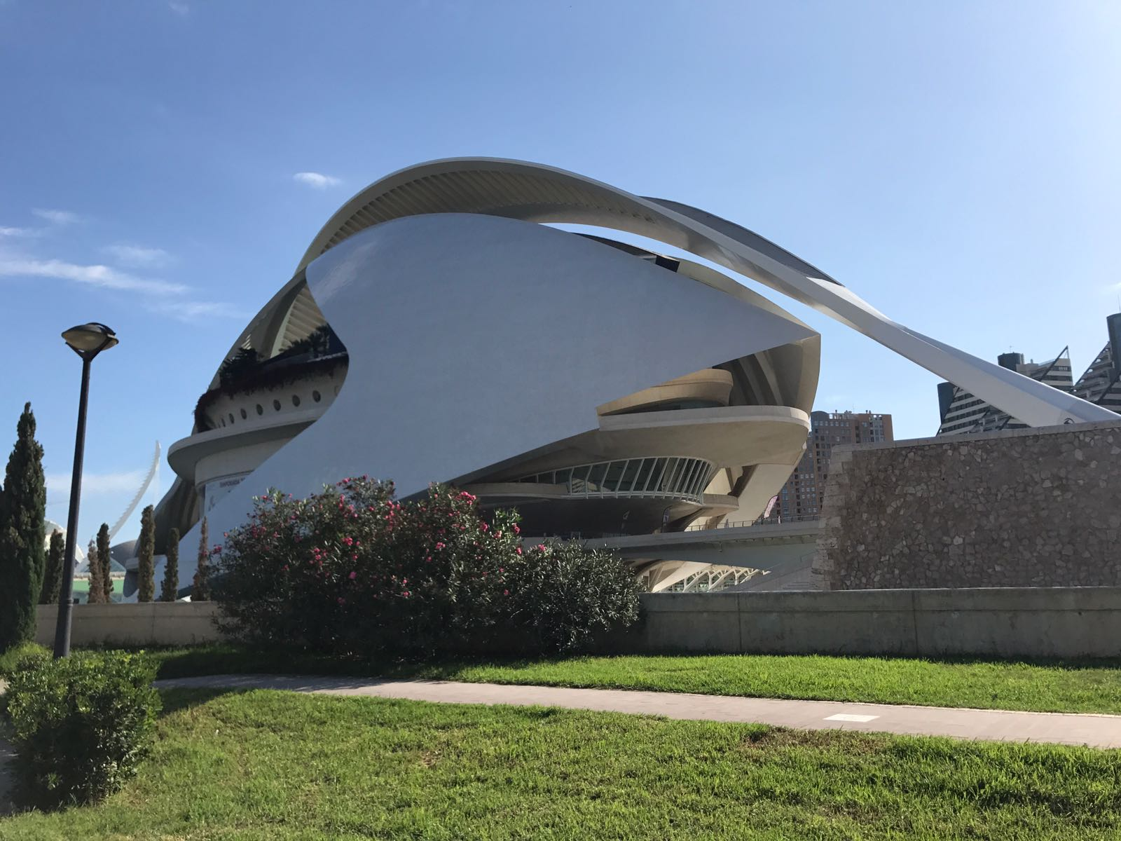 Opera Valencia from behind showing the side covering and the surrounding gardens