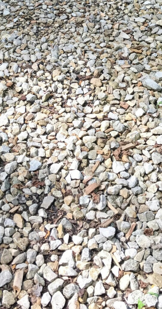 a path made up of lots of pointy stones