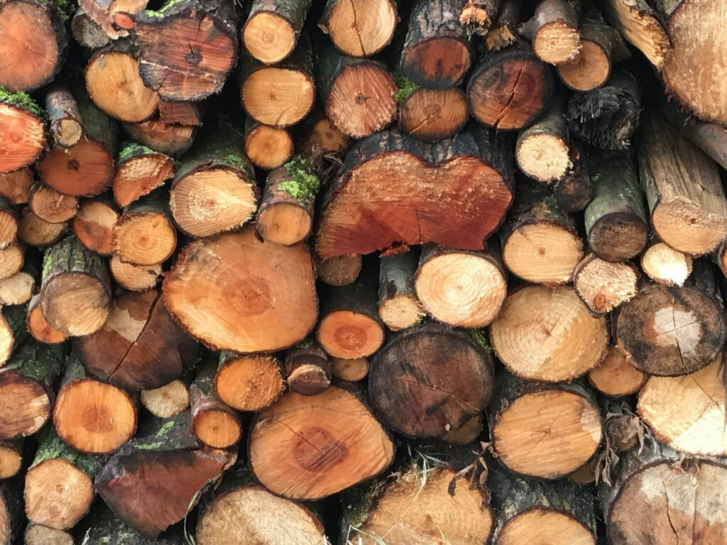 A pile of wood with lots of different shades of brown