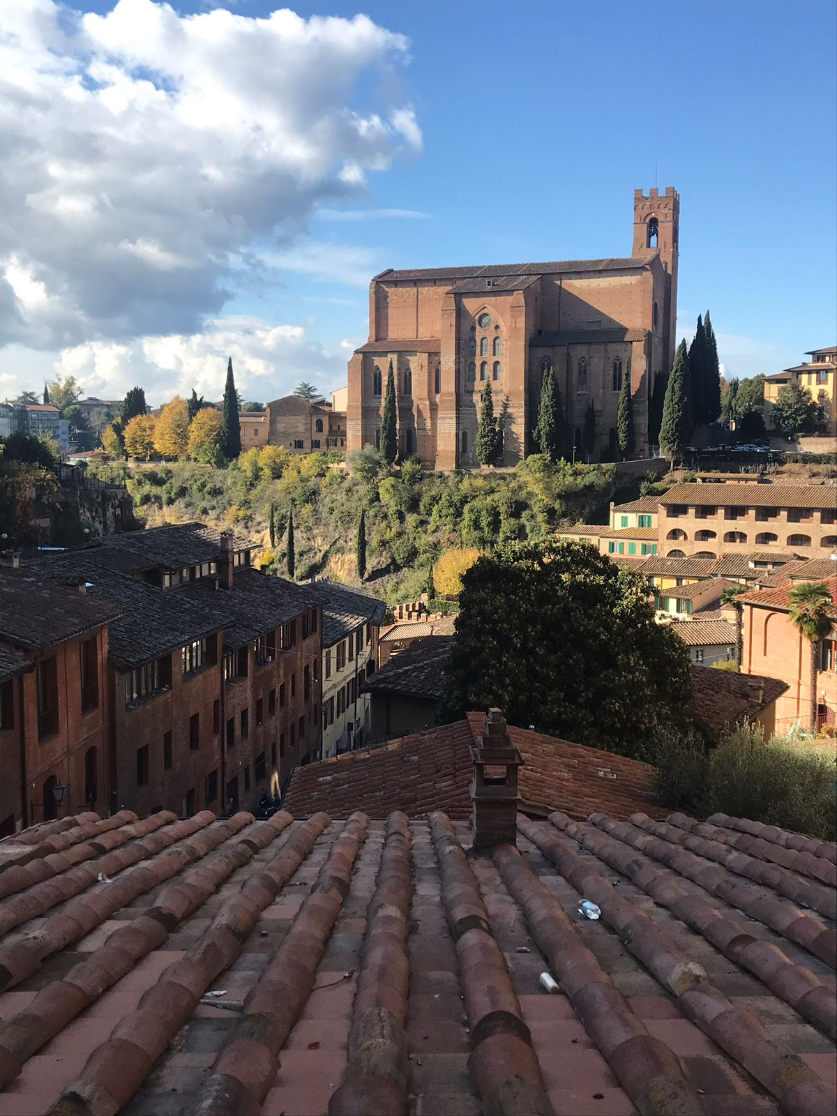 A massive church, a park and a terrace of houses on a hill all seem from a rooftop in Siena