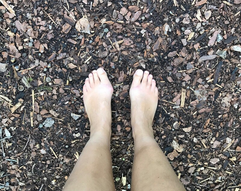 roz's feet on small woodchips