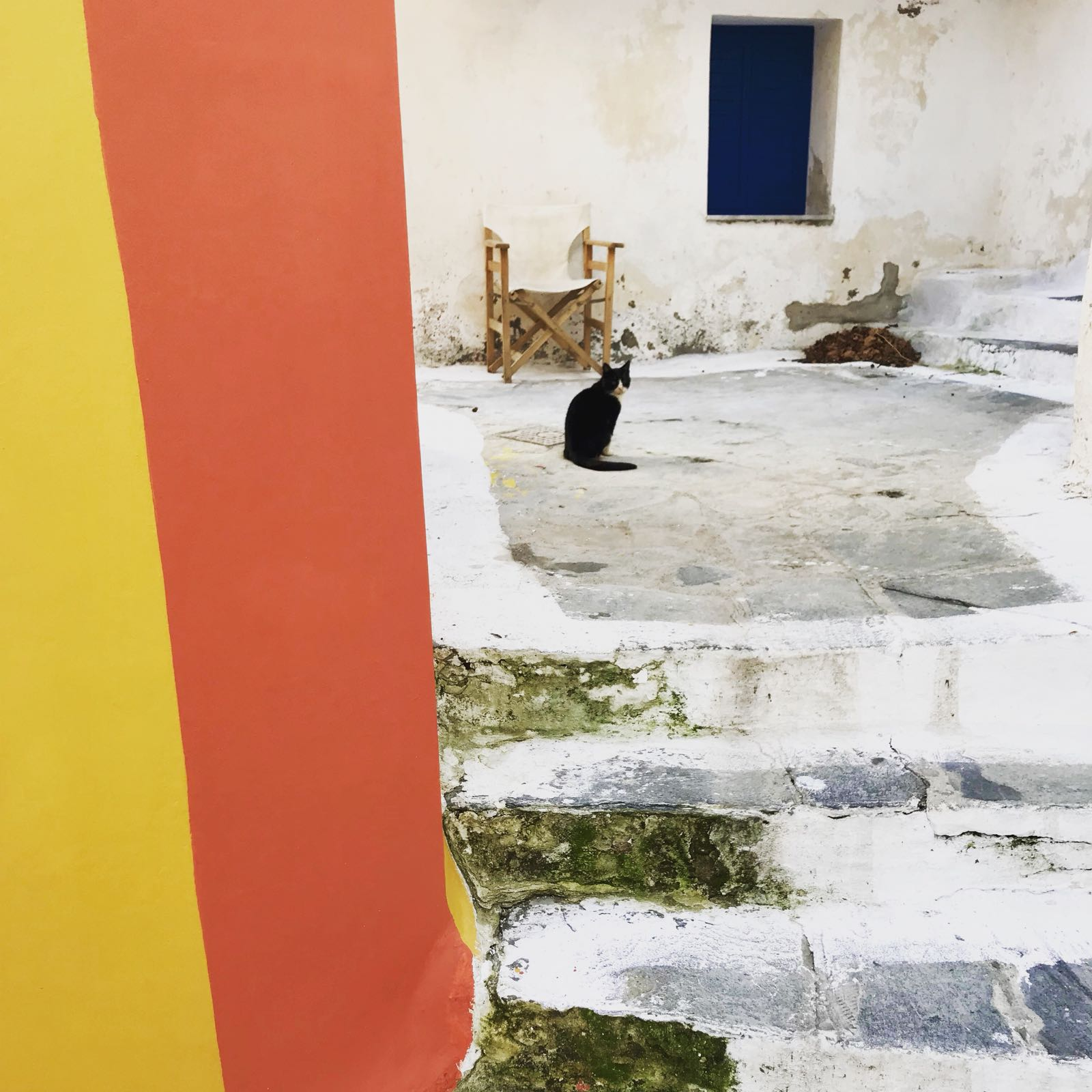 Pathway in Chora winding past a yellow and orange house with a cat in shot