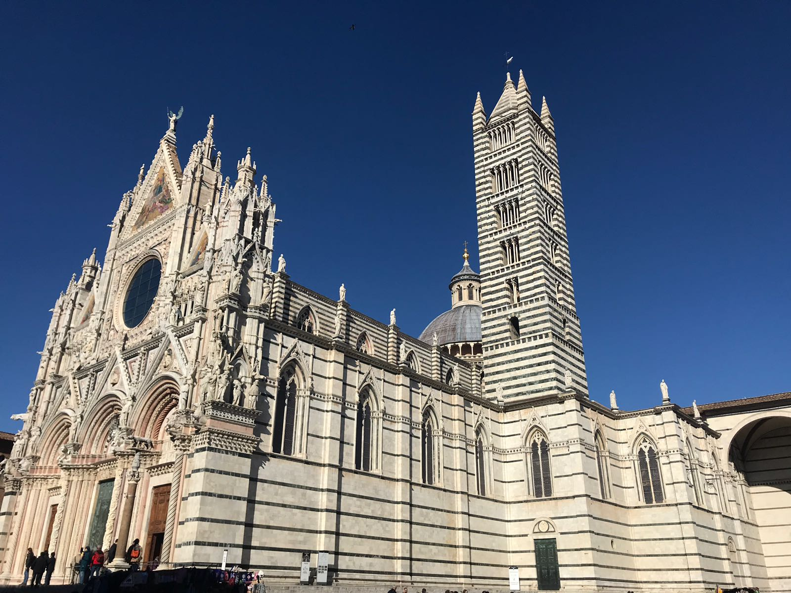 Siena Cathedral against a clear blue sky with facade and tower both visible