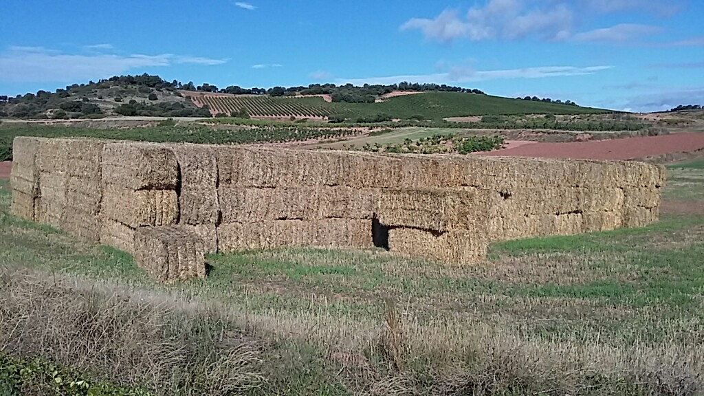Square hay bales in a stack with some loose