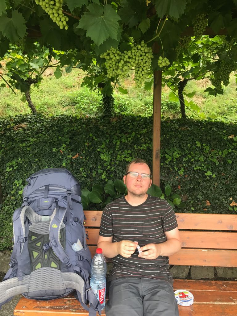 tom on a bench surrounded by grapes