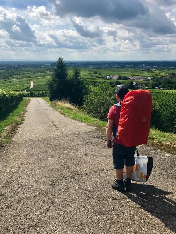 Tom on a walk through the vineyards