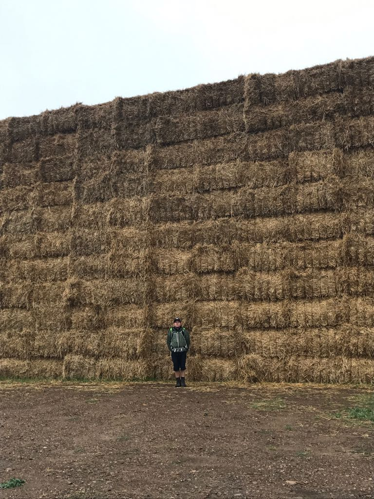 Tom in front of a giant haystack