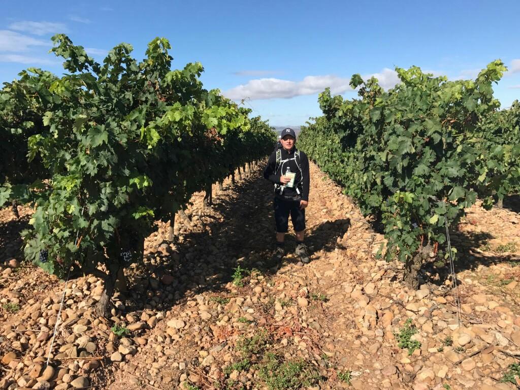 Tom in vineyards in Rioja
