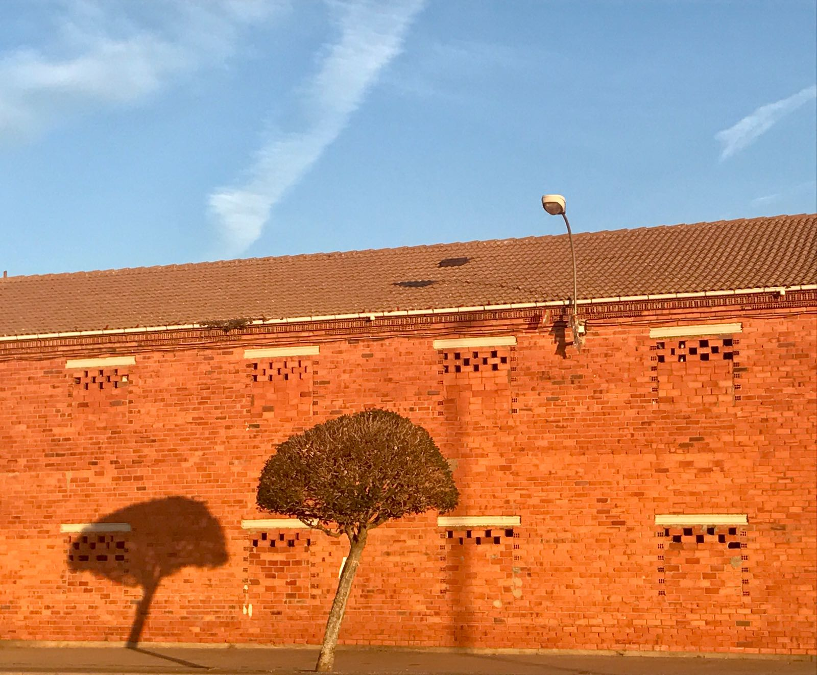 Orange building with a single tree in front of it on the Camino path