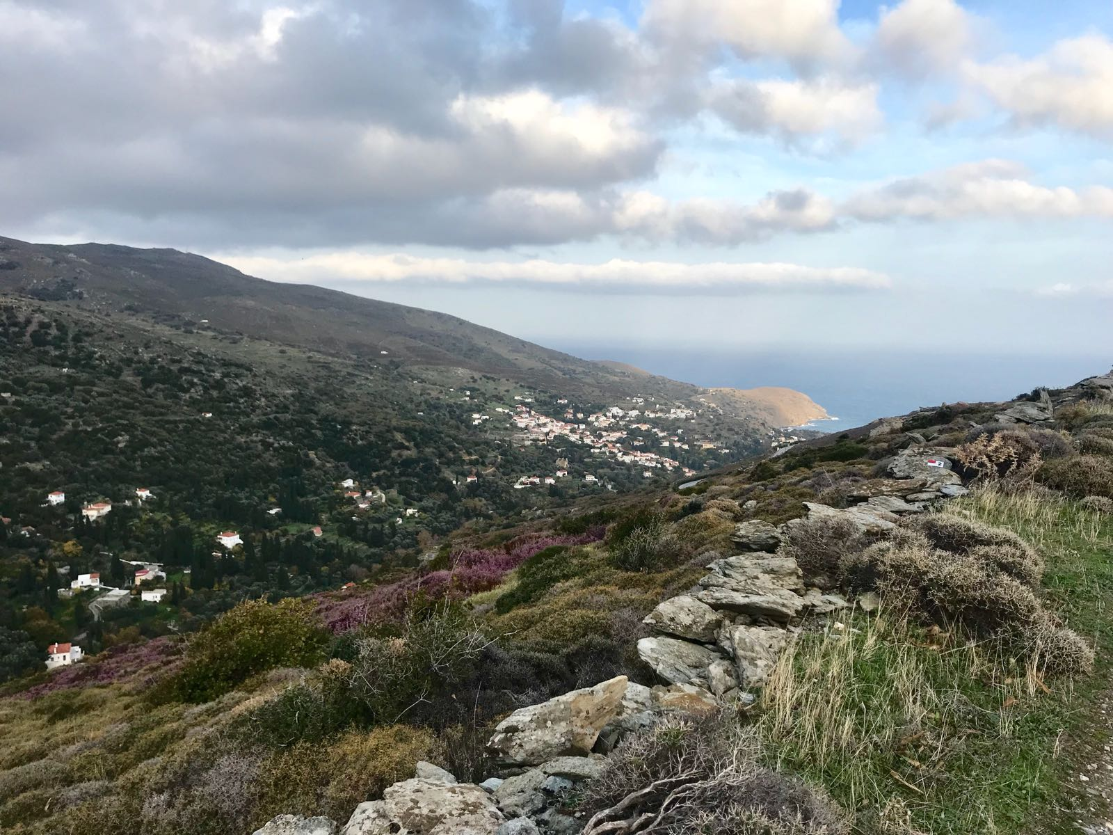 View to the beach for Steines on Andros