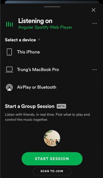 Angular Spotify Web Player