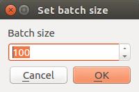 Batch Size