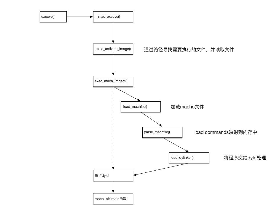 exec函数图