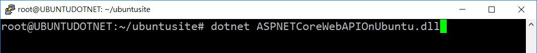 使用 dotnet 指令啟動應用程式