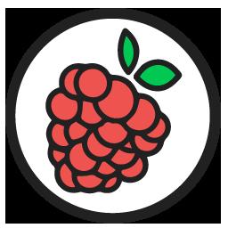 raspberryIO logo