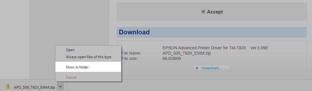 Setting Up Your Epson TM-T82II (USB) for a Windows PC – How