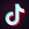 Tiktok Downloader
