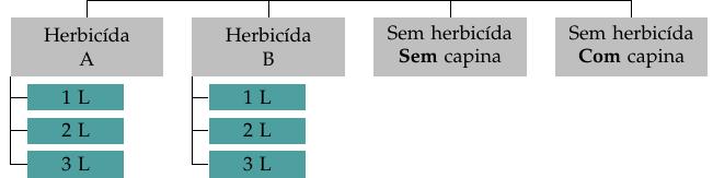 fatadi_arranjo_herbi