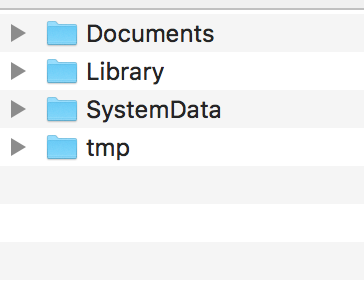 Пример содержимого контейнера в Finder