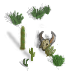 desert-plant5.png