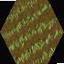 farm-veg-spring-icon.png