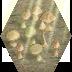 mushrooms-beam-tile.png