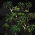 jungle-tile.png