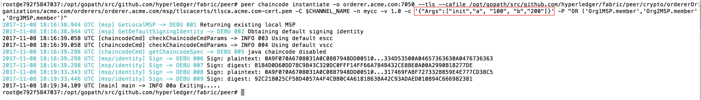 Instantiate chaincode
