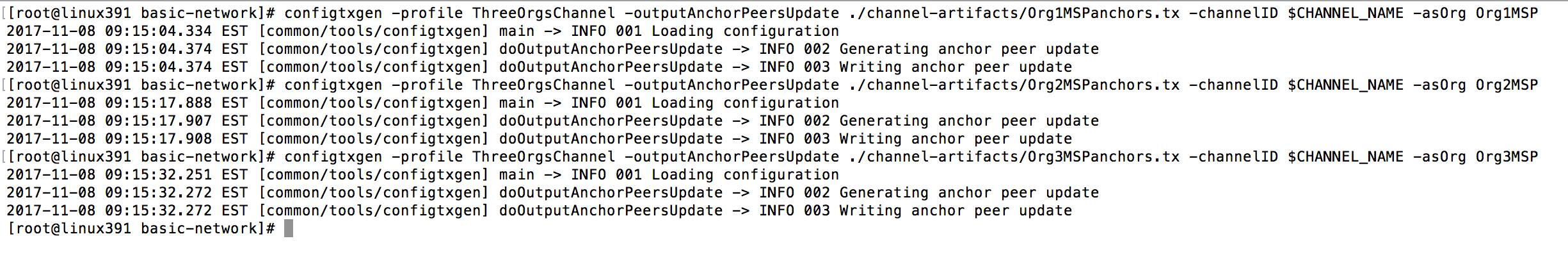 define anchor peer